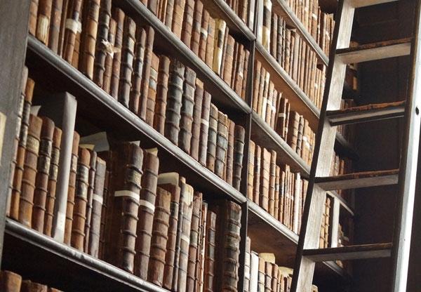Bibliothèque d'angle avec échelle
